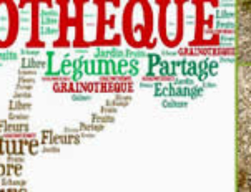 La Grainothèque du Loubatas