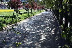 municipalite_travaux_IMG_0226